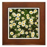 Daisy Day Framed Tile