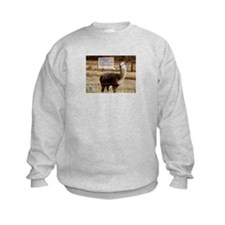 Dark Side of the Moon Drama Llama Sweatshirt