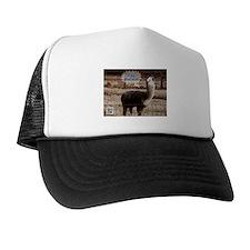 I am Spartacus Drama Llama Trucker Hat