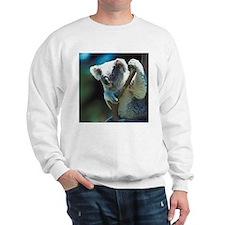 Koala Bear Sweatshirt