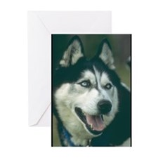 Siberian Husky Photo Greeting Cards (Pk of 10)