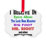 MR. RIGHT Picture Ornament
