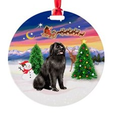 Santa's Take Off (RS) & Newfie Ornament (Round)