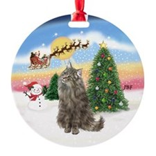 Take Off (B) Norwegian Forest cat Ornament (Round)