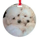 BICHONS IN LOVE ORNAMENT