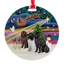 Xmas Magic - 3 Newfies Ornament (Round)