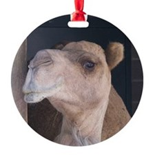 Wise Camel Ornament (Round)