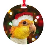 Santa Hat White Bellied Caique Christmas Ornament