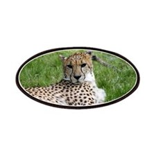 Cheetah 2.jpg Patches