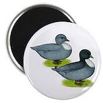"""Blue Call Ducks 2.25"""" Magnet (10 pack)"""