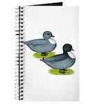 Blue Call Ducks Journal