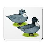 Blue Call Ducks Mousepad