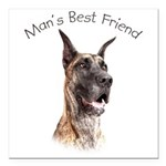 Man's Best Friend Square Car Magnet 3