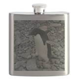 Adelie Penguin Walking 2 Flask