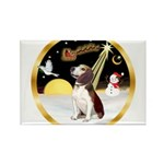 Night Flight/Beagle #2 Rectangle Magnet (10 pack)