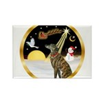 Night Flight/Greyhound (brin) Rectangle Magnet (10