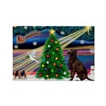 Xmas Magic & Choc Lab Rectangle Magnet