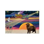 XmasStar/ Newfie Rectangle Magnet (10 pack)