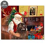 Santa's Newfoundland Puzzle
