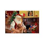 Santa/Nova Scotia Dog Rectangle Magnet (10 pack)