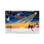 XmasSunrise/Papillon #1 Rectangle Magnet (10 pack)