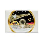 Wisemen/Pekingese Rectangle Magnet (10 pack)