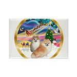 XmasMagic/2 Pomeranians Rectangle Magnet (10 pack)