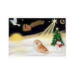 Night Flight/Pomeranian Rectangle Magnet
