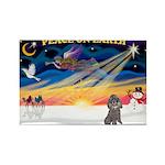 XmasSunrise/Poodle (min) Rectangle Magnet (10 pack