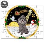 Night Flight/Silver Poodle Puzzle