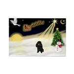 Night Flight/Poodle (min) Rectangle Magnet (10 pac