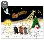 Night Flight/4 Poodles Puzzle