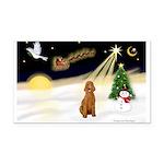 Night Flight/Apricot Poodle ( Rectangle Car Magnet