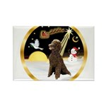 Night Flight/Poodle Std(choc) Rectangle Magnet