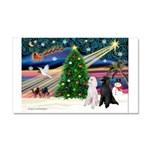 XmasMagic/ 2 Std Poodles Car Magnet 20 x 12