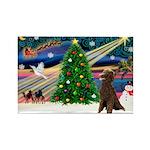 XmasMagic/ Std Poodle Rectangle Magnet (10 pack)
