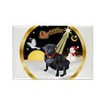 Night Flight/Pug (black) Rectangle Magnet (10 pack