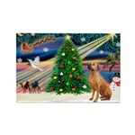 XmasMagic/Rhodesian RB Rectangle Magnet (10 pack)