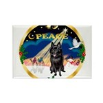 XmasSunrise/Schipperke Rectangle Magnet