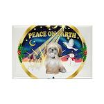 XmasSunrise/Shih Tzu Rectangle Magnet (10 pack)