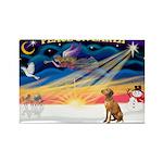 XmasSunrise/ Vizsla #1 Rectangle Magnet (10 pack)