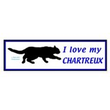 Chartreux Cats Bumper Sticker