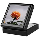 Peach Rose 2 Keepsake Box