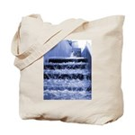 Balboa fountain Tote Bag