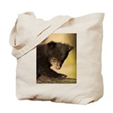 New Bear Cub Tote Bag