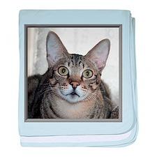 Savannah Cat Portrait with frame baby blanket