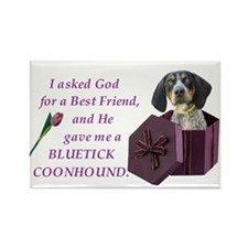 Bluetick Coonhound Rectangle Magnet (100 pack)