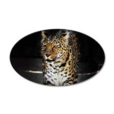 Northern Chinese leopard 12.jpg Wall Decal