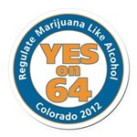 YES on 64 Car Magnet