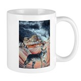 coyote at The Wave2.jpg Mug